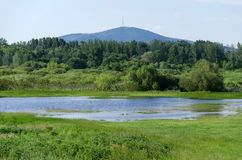 Spring flooding. Flood basin of the Tisza River in Tiszalok, Hungary. Hungarian countryside. Overflow of water from the river. Tokaj Hill and a TV tower in the stock photo
