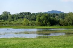 Spring flooding. Flood basin of the Tisza River in Tiszalok, Hungary. Hungarian countryside. Overflow of water from the river. Tokaj Hill and a TV tower in the royalty free stock photo