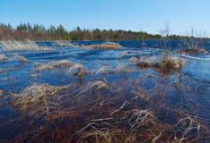 Spring flooding on the lake Stock Image