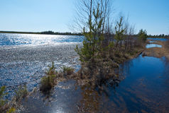 Spring flooding on the lake Stock Photography