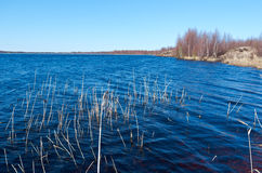 Spring flooding on the lake Stock Photo