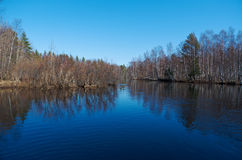 Spring flooding on the river. Russian landscape.Spring flooding on the river  Arkhangelsk region Stock Image