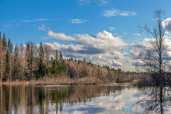 Spring flooding in Siberia Royalty Free Stock Image