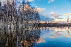 Spring flooding in Siberia Stock Photo