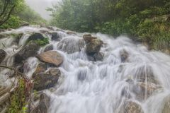 The spring floods on the river Dzembronya, which in the Ukrainian Carpathians, form small waterfalls stock photography