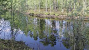 Spring floods on the Siberian river.Reflection of trees in water. Spring floods on the Siberian river. Reflection of trees in water,the movement of the camera stock video