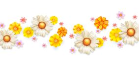 Spring floral abstract pattern with bud of summer flowers. Set of wildflowers isolated on white. Daisies, chrysanthemums. Template for cover, wedding Royalty Free Stock Photography