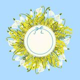 Spring floral abstract template background with Snowdrop and mimosa acacia flower and place for text Royalty Free Stock Images