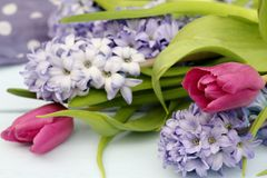 Spring floral arrangement blue hyacinth and pink tulips Royalty Free Stock Photography