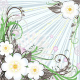 Spring floral background. With flowers and leafs vector illustration