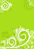 Spring floral background Stock Photos