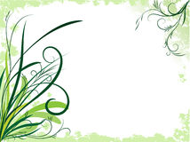 Spring floral background Royalty Free Stock Image