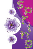 Spring floral background. Spring background with purple flowers and space for text, vector, illustration Royalty Free Stock Photography