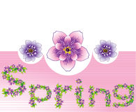 Spring floral background. Spring background with purple flowers and space for text, vector, illustration Royalty Free Stock Photo