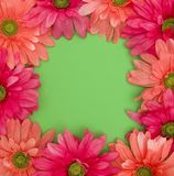 Spring Floral Background with Customizable Space in Green Stock Photo