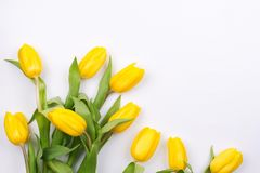 Spring floral background with beautiful yellow tulip flowers. Holiday and seasonal design. Copy space. Flat lay royalty free stock images