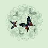 Spring floral background with butterflies, hand-drawing. Vector Stock Photography