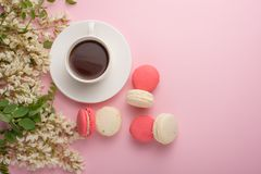 Spring floral background with coffee and macaroons, textures and wallpaper. Flat white flowers on a light pink background, top vie royalty free stock image