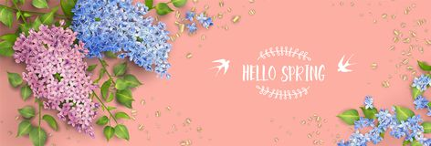 Spring Floral Background. Spring vector floral background. Branch of a blossoming Lilac royalty free illustration