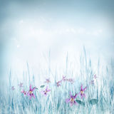 Spring floral background with violet flowers Royalty Free Stock Images
