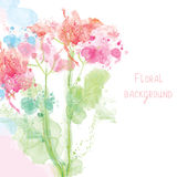 Spring floral background - watercolor Stock Image