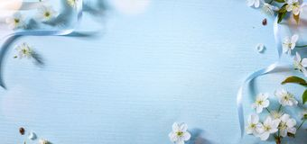 Spring floral background with white blossom; Easter flower Stock Photos