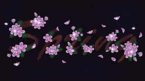 Spring floral banner Stock Photos