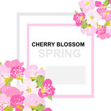 Spring floral card Royalty Free Stock Photo