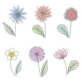Spring Floral flower pastel line draw art vector set design Royalty Free Stock Photography