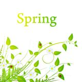 Spring floral frame. Floral decoration with foliage and copyspace for your text Royalty Free Stock Images