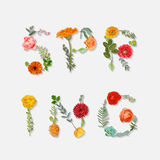 Spring - Floral Graphic Design Stock Photography
