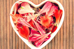 Spring floral petals love heart shape decor Stock Images
