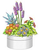 Spring Floral Planter illustration. An outdoor planter filled with festive spring blooms royalty free illustration