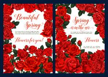 Spring floral poster with red rose flower frame. Spring season floral poster with red rose flower frame. Springtime blossom of garden rose festive banner with Stock Photography