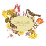 Spring Floral Retro Card with Bird Sparrows Royalty Free Stock Images