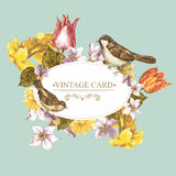 Spring Floral Retro Card with Bird Sparrows Stock Images