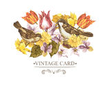 Spring Floral Retro Card with Bird Sparrows Royalty Free Stock Photo
