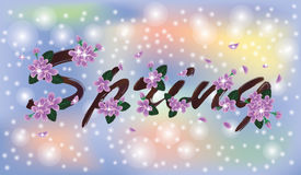 Spring sacura banner Royalty Free Stock Photography