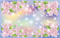 Spring floral sakura background, vector Stock Image