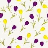 Spring floral seamless pattern Stock Photos
