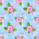 Spring floral seamless pattern. EPS10. Contains transparency and gradients Royalty Free Stock Image