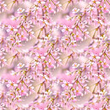 Spring floral seamless pattern. Seamless natural texture with blossom tree branches. Spingtime in garden. Blooming twigs Stock Images