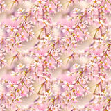 Spring floral seamless pattern. Seamless natural texture with blossom tree branches. Spingtime in garden. Blooming twigs Royalty Free Stock Photo