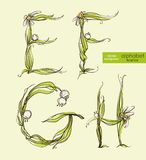 Spring floral stylized hand drawing alphabet.  Vector illustration. Stock Images
