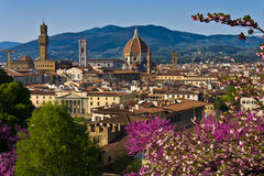 Spring in Florence. Picture of central part of Florence with a view of Dome of Santa Maria del Fiore and Palacio Vecchio. Italy Stock Photo