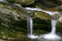 Spring Flow. Water flowing in Early spring. Great Smoky Mountains National Park royalty free stock photography