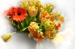 Spring flower arrangement Royalty Free Stock Photography