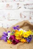 Spring flower arrangement against a rustic background Stock Photos