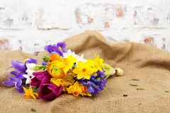 Spring flower arrangement against a rustic background Royalty Free Stock Photography