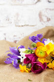 Spring flower arrangement against a rustic background Stock Image